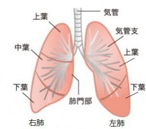 肺がん治療方法