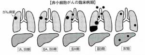 hisyosaibo4343