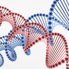 肝臓がんの「遺伝子治療」