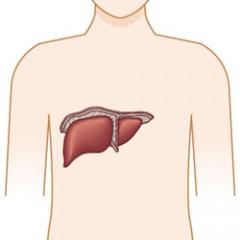 再発した肝臓がんの治療法