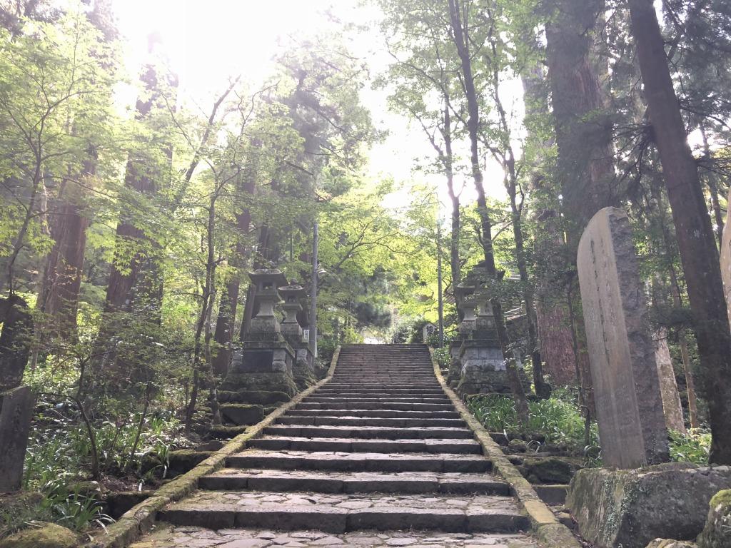 大雄山 最乗寺の杉参道