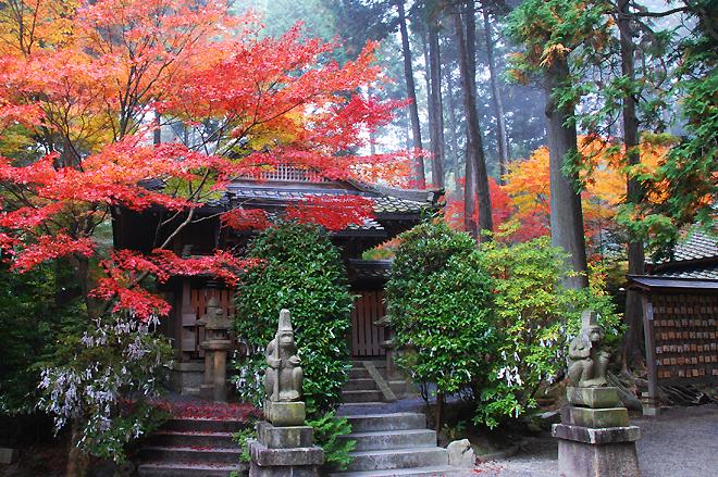 京都府綴喜郡 猿丸(さるまる)神社の紅葉