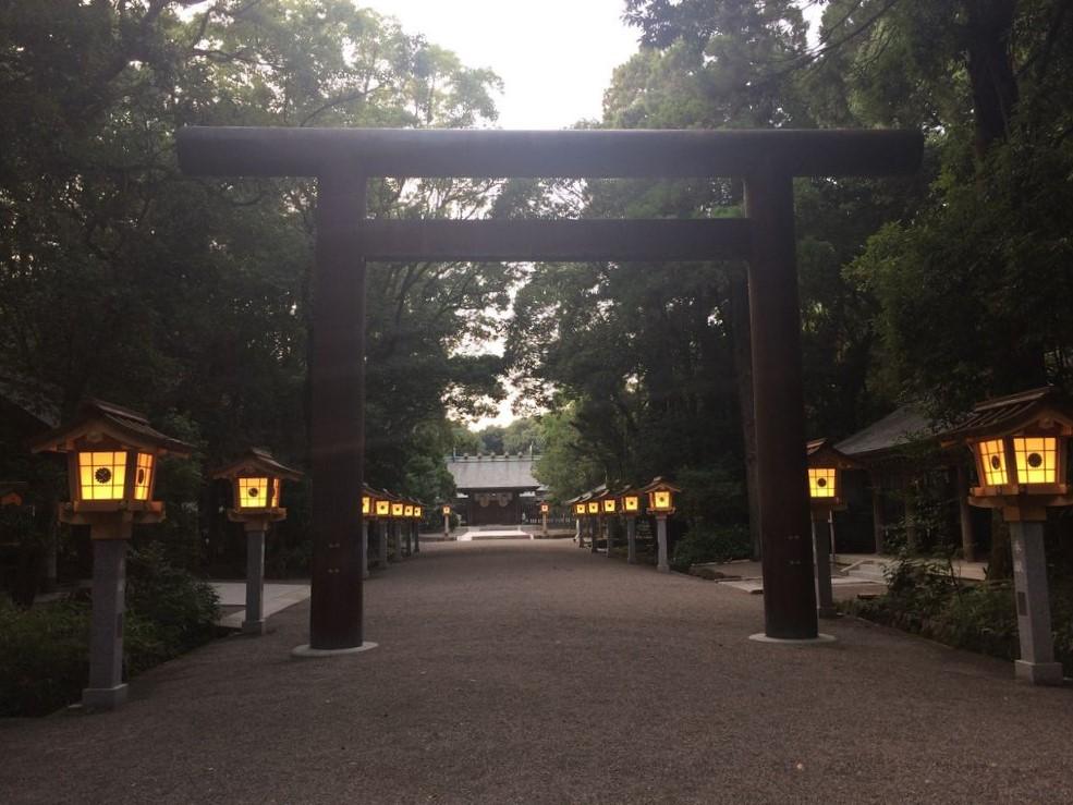 ライトアップされる宮崎神宮の参道