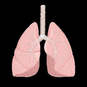 大腸がん肺転移時の治療法
